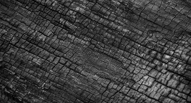 कोयला ब्लॉक की नीलामी को सुप्रीम कोर्ट में चुनौती – एतिहासिक कदम